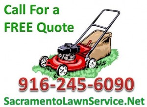 Sacramento Lawn Service Call For Free Quote