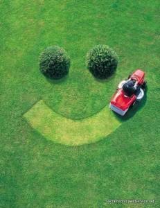 Sacramento Lawn care service